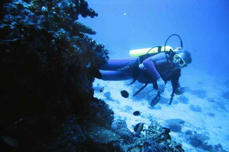 Diving in sosua